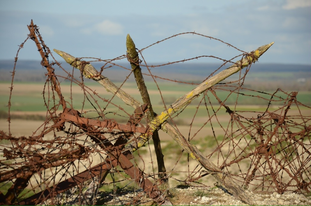 Barbed wire on the champagne ww revisited